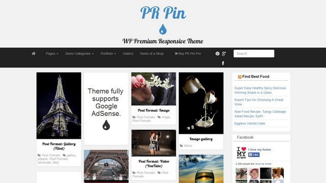 PR Pin Free Multi-purpose WordPress Theme