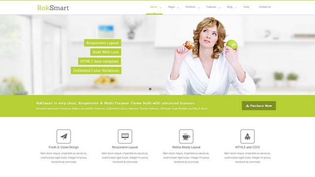 RokSmart Multi-Purpose WordPress Theme