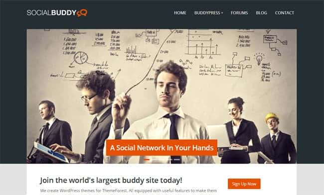 socialbuddy-wp-theme