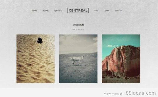 Centreal WordPress Theme from Northeme