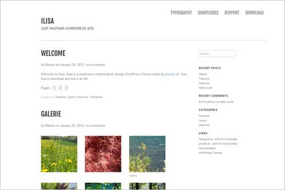Ilisa WordPress Theme