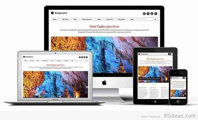 Responsive WordPress Theme by Templatic