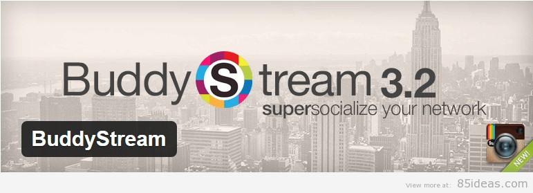 BuddyStream Plugin