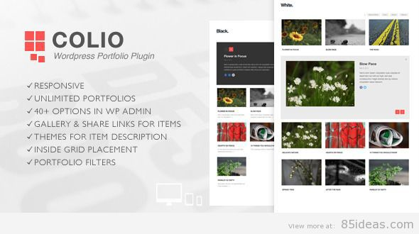 Colio Portfolio WordPress Plugin
