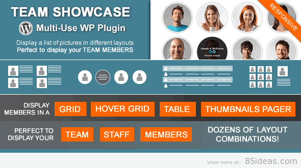 Team Showcase WordPress Plugin