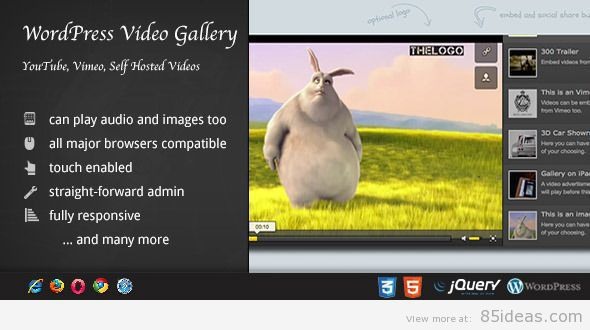 Video Gallery WordPress Plugin