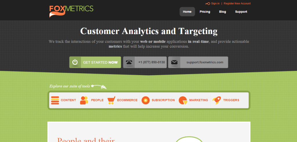 Web Analytics FoxMetrics