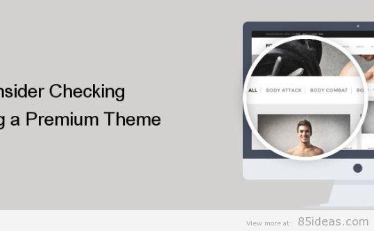 Buying a Premium Theme