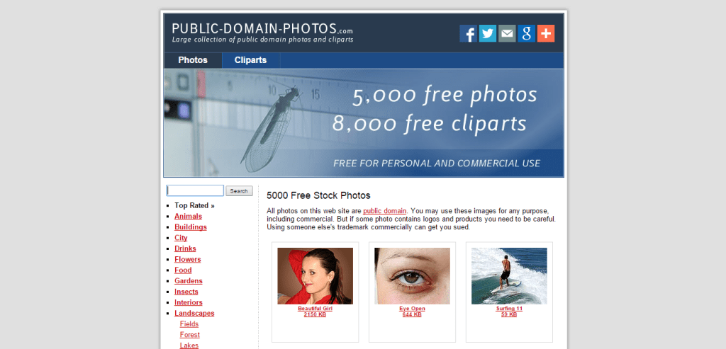 5000 Free Stock Photos