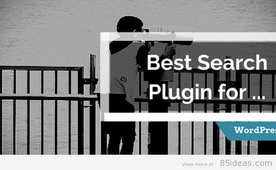 Search Plugin for WordPress