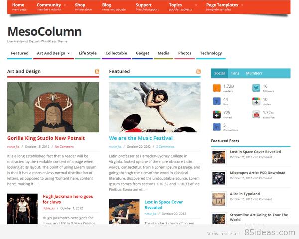 MesoColumn Free Theme