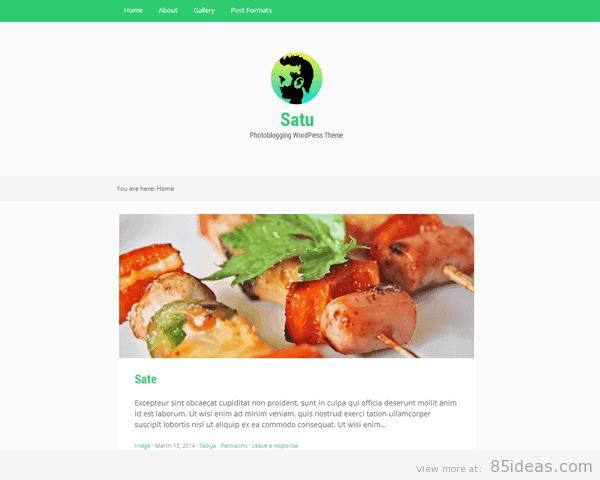Satu WordPress Theme