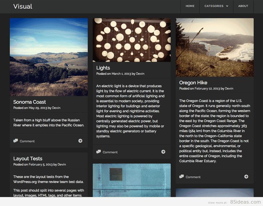 Visual Free WordPress Theme