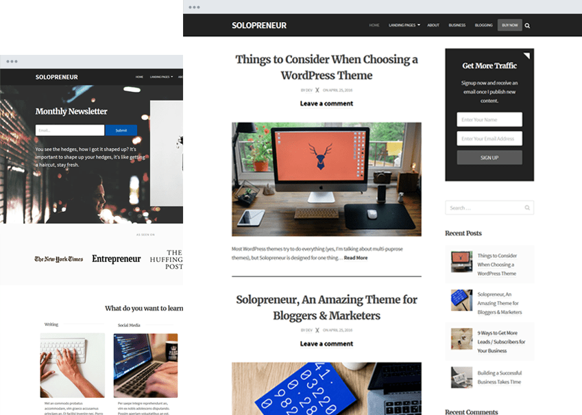solopreneir WordPress theme