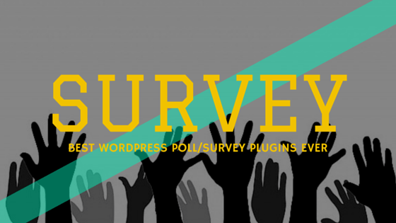Best WordPress Voting Plugins