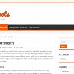 Advanced WordPress Widgets