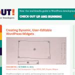 Creating Dynamic User Editable WordPress Widgets