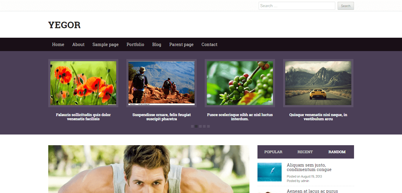 Yegor WordPress Theme