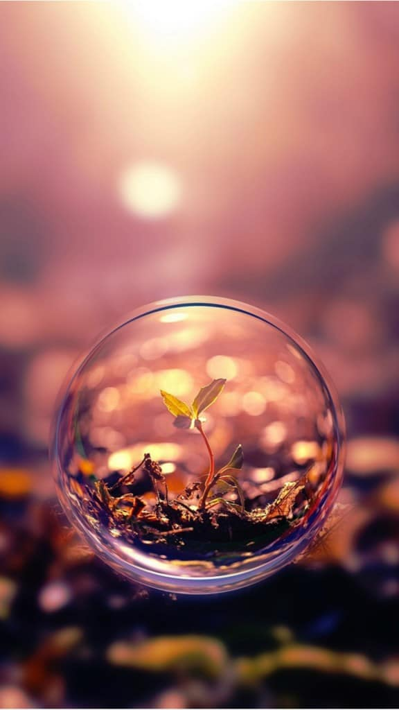 Plant-Water-Bubble-iphone-6-wallpaper