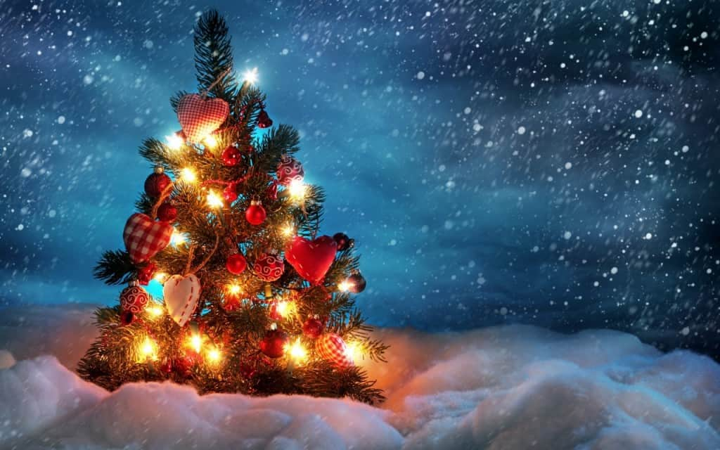 beautiful_christmas_tree-1280x800