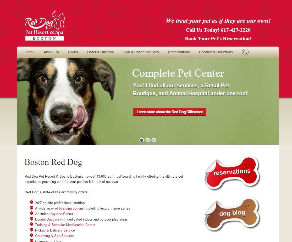 12-boston-red-dog