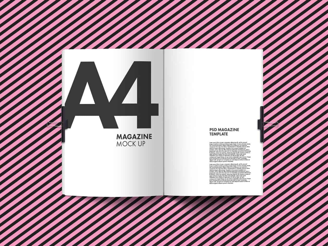 A4 Magazine Mock Up