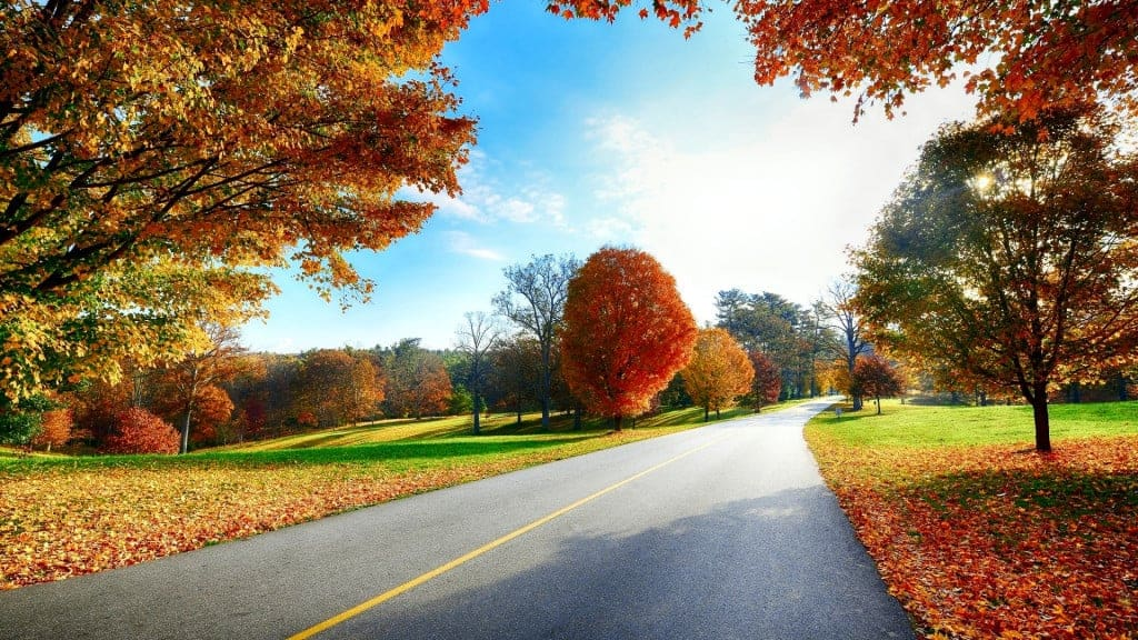 Beautiful autumn road scenery wallpapers