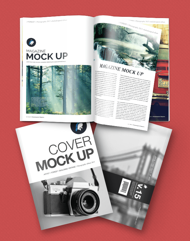 Free magazine and cover template