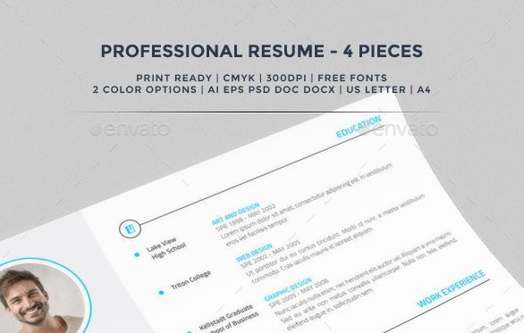 Professional Resume Themeforest