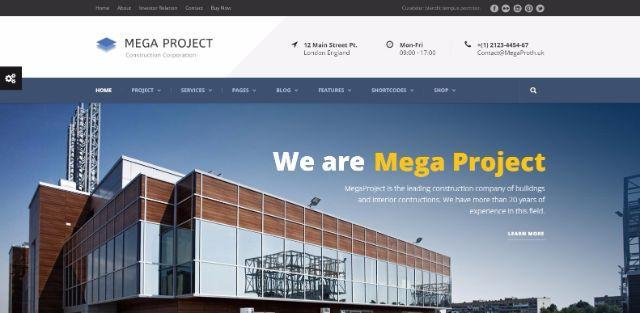10mega project