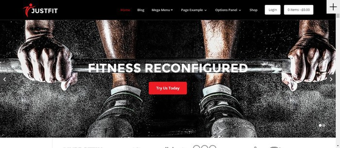 12 JustFit Theme