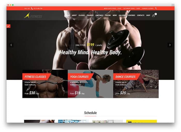 Crossfit WordPress themes