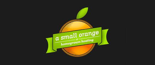 ASmallOrange Hosting Review4