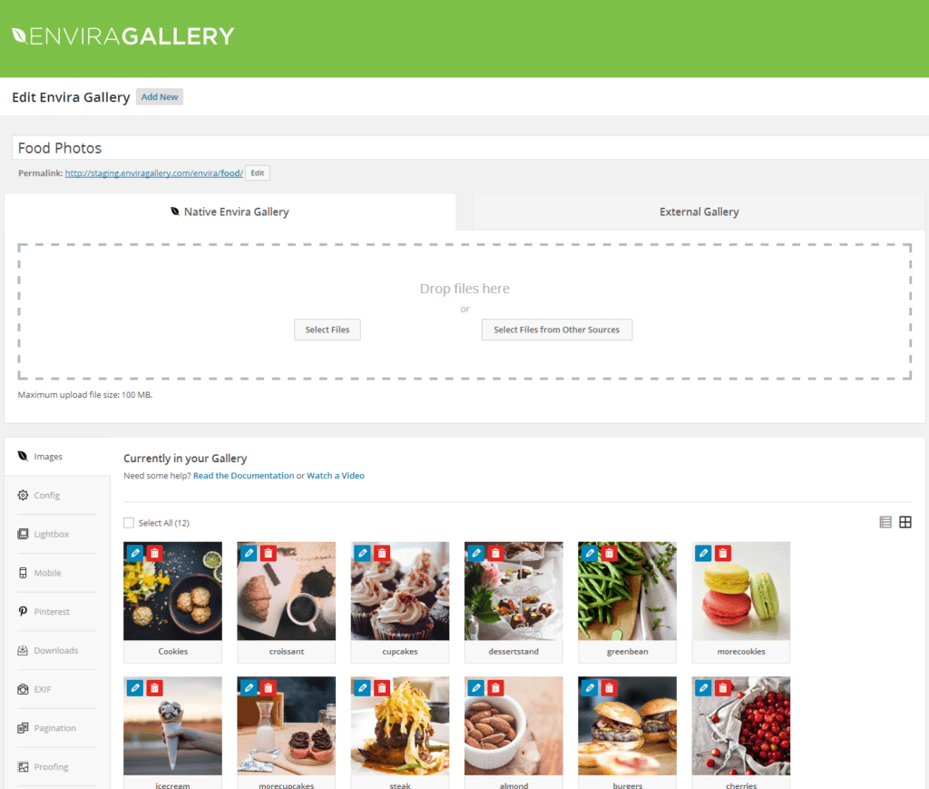 envira-gallery-lite Media Manager WordPress Plugin