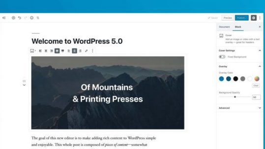 WordPress 5.0 Update