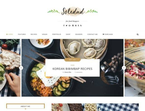 soledad-food-wordpress-theme
