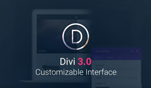 Divi Website and Blog WP Theme