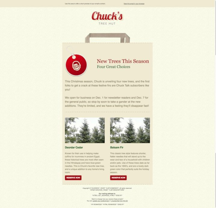 Shopping-Bag MailChimp email template