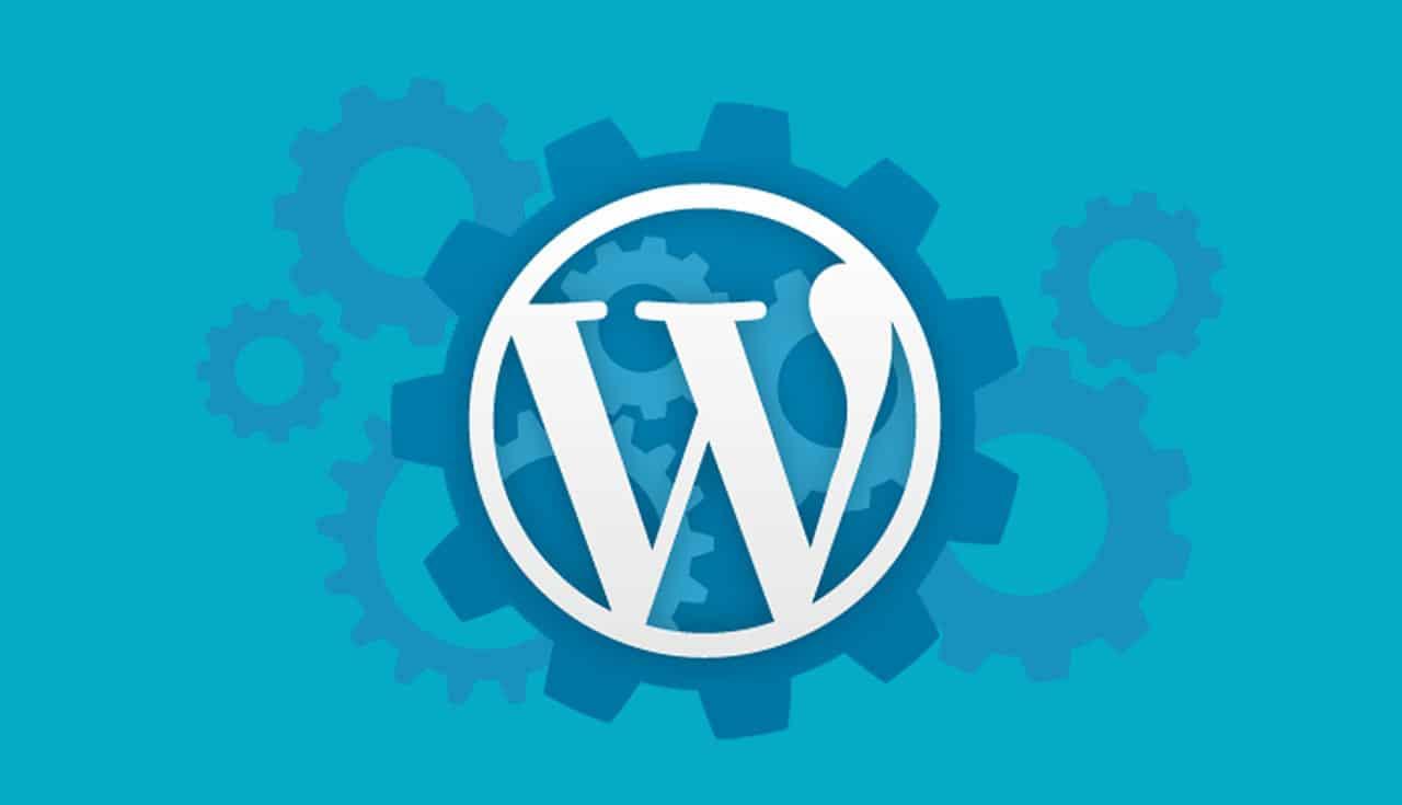 WP 101: What is a WordPress Developer (& Do I Need One)? - 8