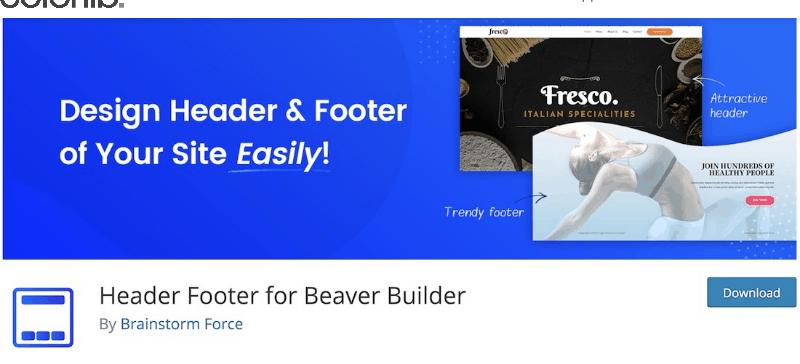 Best-WordPress-Footer-Plugins
