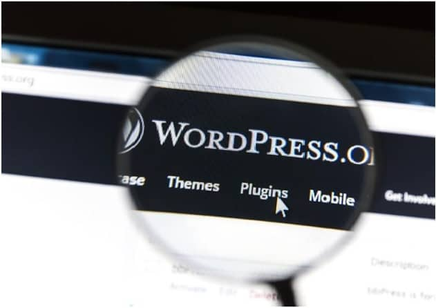 wordpress saas plugins