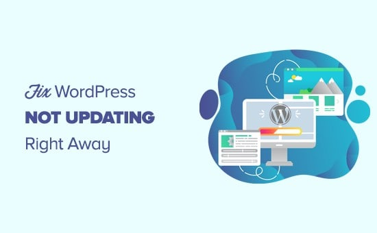 How to Fix WordPress Site Not Updating Immediately