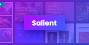 Salient-Responsive-Multi-Purpose-Theme